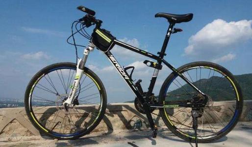 自行车行业年收入将破3600亿元 9个月出口近160亿元
