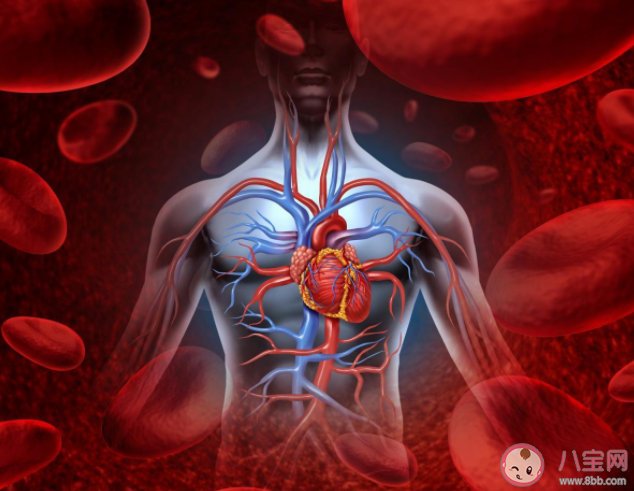 几百元心脏支架质量会大打折扣吗 关于心脏支架使用9大疑惑解答